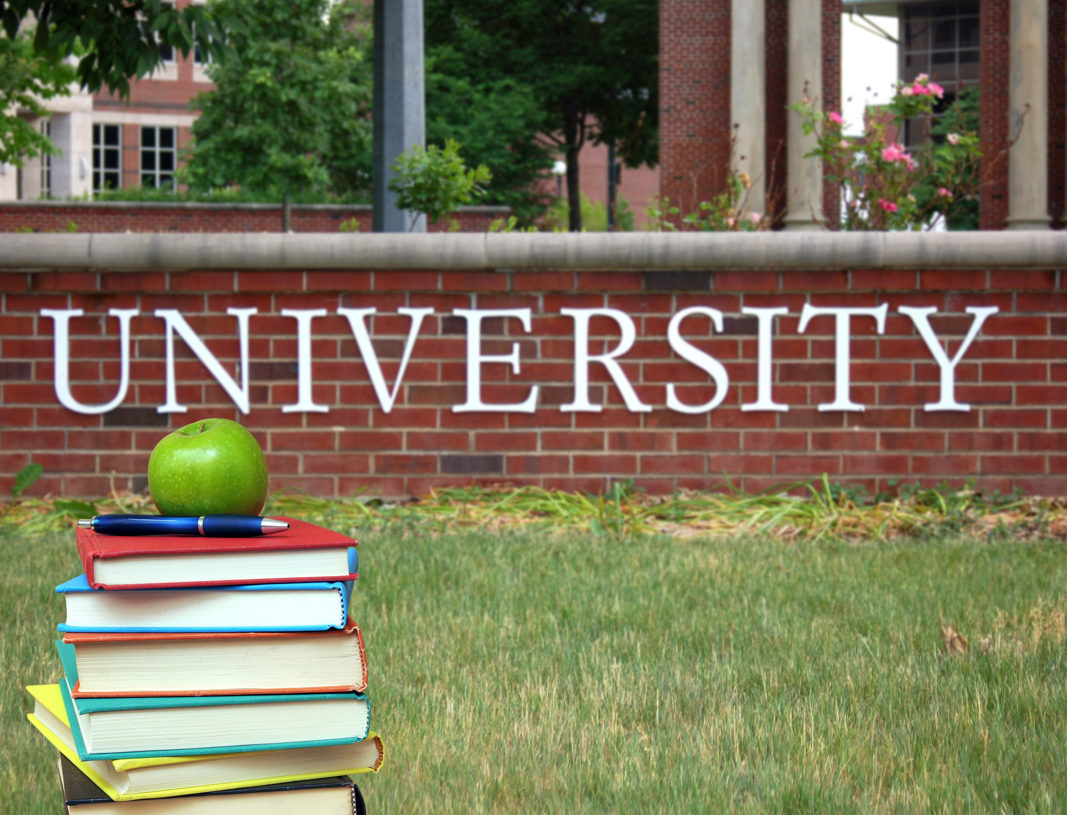 university_ shutterstock
